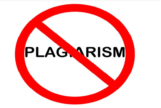 Plagiarism-free management assignment