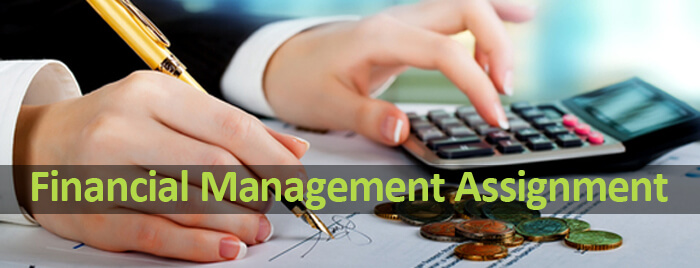 finance management assignment services